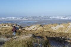 strand en zee terschelling