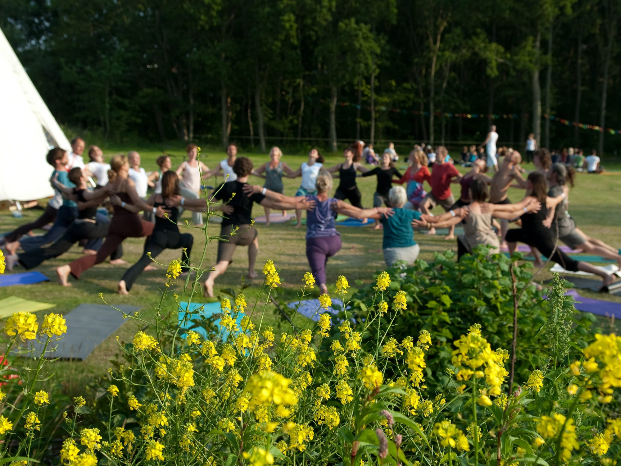 yoga veluwe wellness